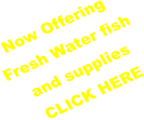 Now Offering Fresh Water fish and supplies CLICK HERE